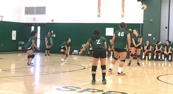 Spring Grove Girls' Volleyball